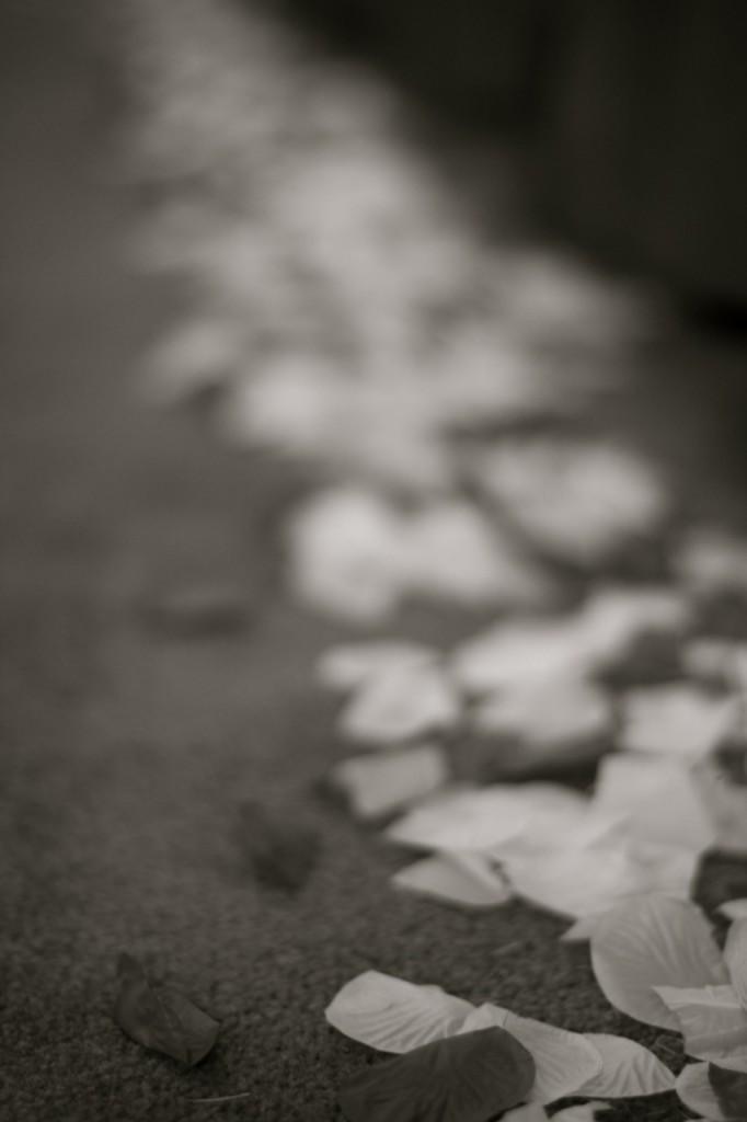 heart to heart wedding petals