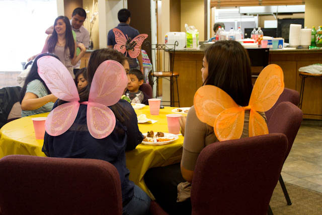 butterfly party decorations in use