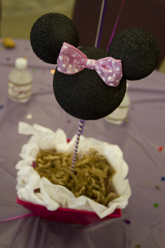 Minnie Mouse First Birthday-006