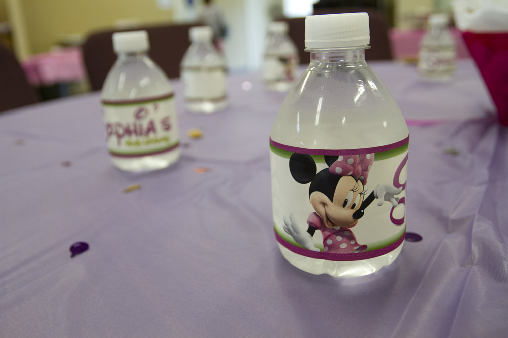 Minnie Mouse First Birthday-007