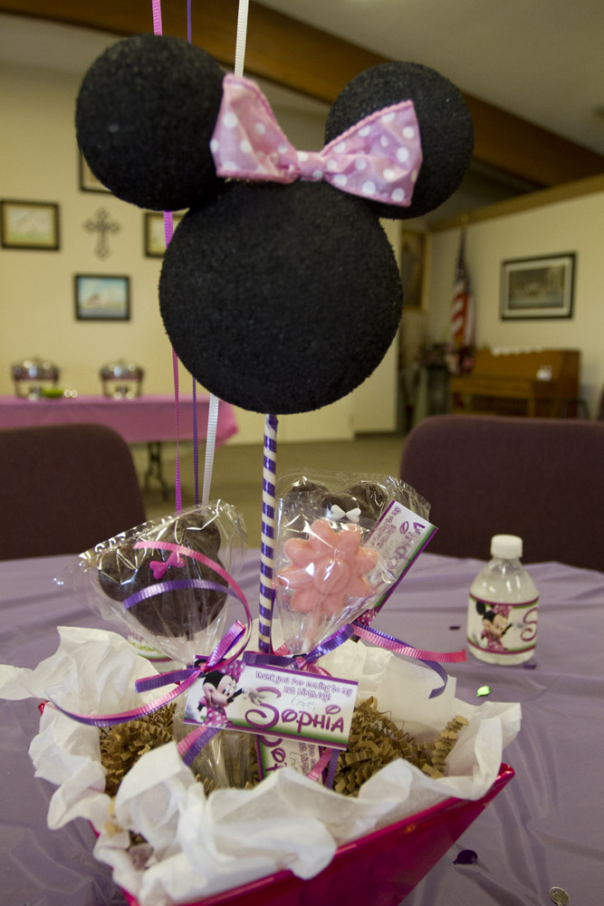 Minnie Mouse First Birthday-014